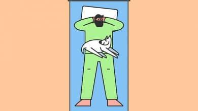 Foto de Dormir com cachorro: pode ou não pode? Prós e contras!